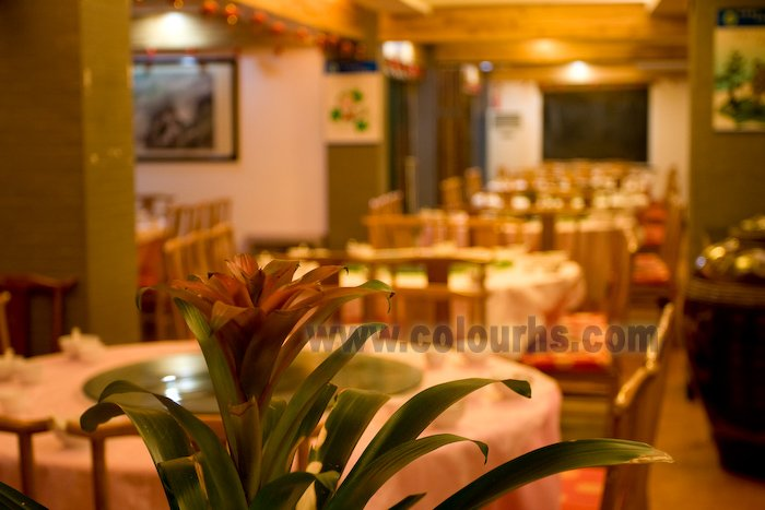 明亮宽敞的餐厅