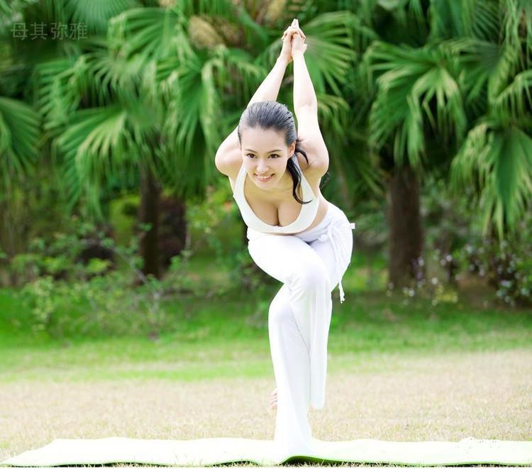 难度的瑜伽动作