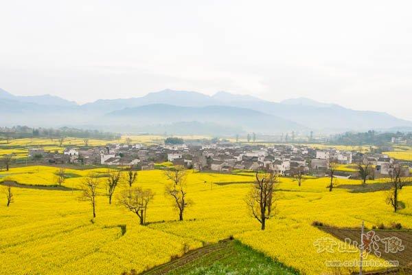 黟县卢村全景远眺