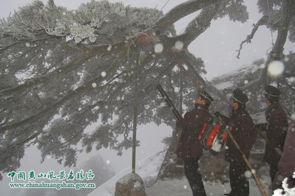 黄山风景区党委委员