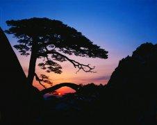 黄山摄影作品