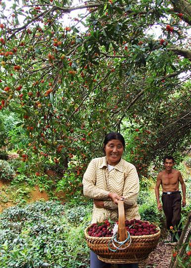 歙县富岱喜悦的农民 图片:张联辉摄.jpg