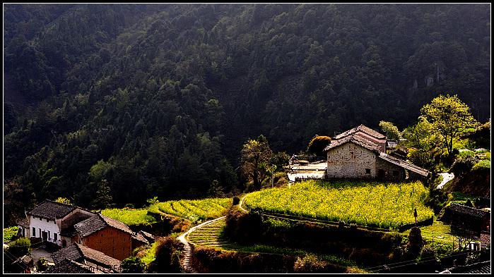 祁门降上风光(图文)_黄山风光摄影网|黄山摄影|黄山