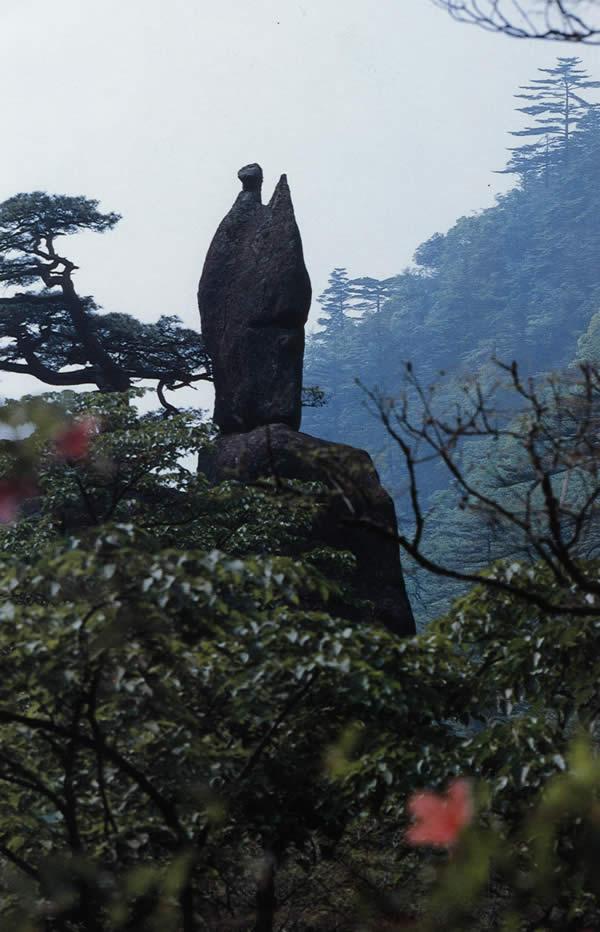 黄山奇石图片之仙人指路.jpg