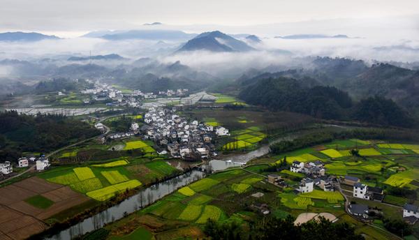 2015第五届黄山油菜花全国摄影大展获奖作品-江山如此多娇-花成清.jpg