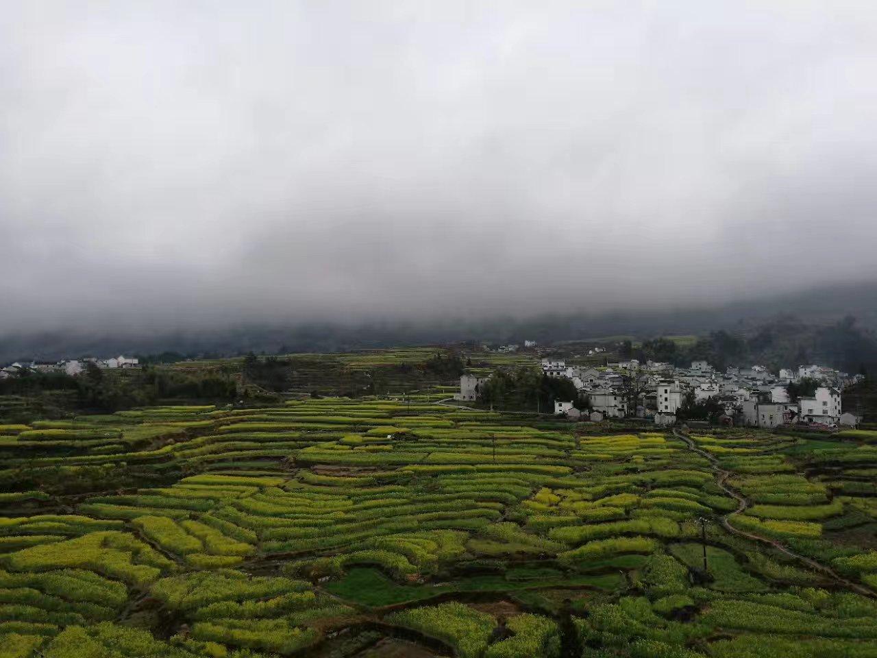 哈苏摄影自然风景